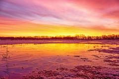 Kloosterveld (aNNajé) Tags: dwingelderveld dwingelo natuurgebied zonsopkomst kleurrijk landschaplandschapsfotografie natuurmonumenten ochtend rood sunrise water