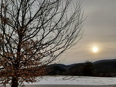 Happy New Year! (angelinas) Tags: sky fog tree arbre naturescenes natura landscapes paysage paesaggi sun sunglow vermont mountain snow winter invernno hiver moody mood atmosphere