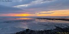 2020 Bonne année - Happy New Year !!!!!!!!!! Que la paix nous rapproche tous oublions les frontières vivons nos rêves !! mes meilleurs vœux ! (Céline Bizot-Zanatta Photographie) Tags: seascape paysagemarin mer sea plage beach sunset coucherdesoleil sable send orange nuages clouds ciel sky rochers récifs célinebizotzanatta celartbz bonneannée happynewyear