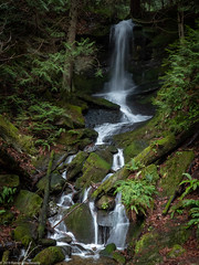 Waterfall (Ramona H) Tags: fragrancelake fragrancelakeroad larrabeestatepark whatcomcounty hiking statepark winter