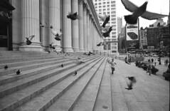 New York, James A. Farley Building (Time Share) Tags: voigtlanderbessar3a voigtlandercolorskopar21mmf4mc neopan400320isohc110b5mins voigtlander rangefinder voigtlanderbessa mmount streetphotography street 35mm 35mmfilm fujineopan neopan wideangle newyork newyorkcity nycity ny film inspiredeye streetlife engagedobserver momentsoftruth sociallandscape