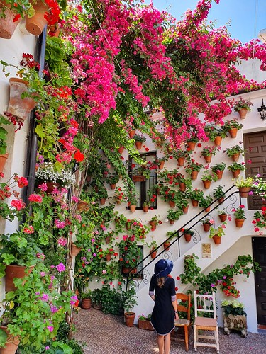 Cordoba Spain Garden Festival of Patios