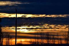 Last sunset for 2019 Saskatchewan Canada Happy New Year Flickr 2020 (darletts56) Tags: sunset sun sundown dusk evening cloud clouds yellow gold golden orange grey black silhouette tree trees pole line lines power snow winter cold poles country countryside prairie field fields flat fence post posts