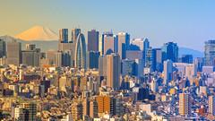 NEW YEAR (ajpscs) Tags: ©ajpscs ajpscs 2019 japan nippon 日本 japanese 東京 tokyo city ニコン nikon happynewyear🐭2020 nikond300 mtfuji