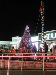 Turtle Back Zoo Christmas Tree, 2019: Multiple Colors (smaginnis11565) Tags: christmas newjersey essexcounty christmastree holidaylights westorange turtlebackzoo