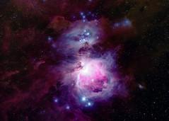 Orion And Running Man (Angry Teddy Bear) (ian_inverarity) Tags: orion stars nikon 600mm australia night astrometrydotnet:id=nova3860378 astrometrydotnet:status=solved