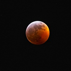 20190120D8E_6730FLR (cisco42) Tags: bc britishcolumbia canada bloodwolfmoon eclipse red