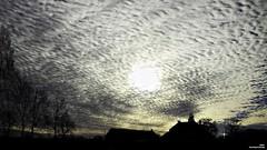 Si longue que soit une nuit d'hiver, le soleil la suit. (Un jour en France) Tags: ciel cielpaysage paysage contrejour nuage nuageux arbre canoneos7d