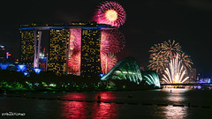 A happy and prosperous new decade await (melvhsc100) Tags: newyear2020 fireworks 2019countdown marinabaysand gardenbythebay landscape seascape singaporenicescenery singaporeattractions beautifulnighscenery celebration event lightandcolors