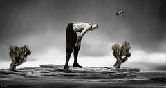 Dawn Of A New Era (☘️ Patrick Ireland ☘️) Tags: surreal surrealism art painting digitalart photoshop owl joshuatree wisdom newyear resolutions ledzeppelin kashmir emilydickinson photography