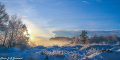 Happy New Year 2020 ! (2000stargazer) Tags: happynewyear newyear january 2020 winter snow sunshine landscape grimseid bergen norway nature light cold fog heaven trees canon gettyimages
