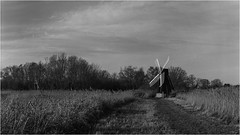 NT Wicken Fen (Linton Snapper) Tags: nationaltrust nt wickenfen cambridgeshire blackandwhite bw windpump mppmicrotechnical largeformat film lintonsnapper hp5plus400
