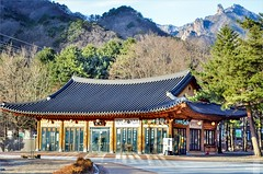 Seoraksan National Park (κεηηγsκ™) Tags: korea southkorea seoraksan nationalpark national park unification buddha tongildaebul sinheungsa shinheungsa jogye jogyeorder buddhism architecture prayer temple workship prayers culture belief winter convenient store convenientstore korean sokcho travel tourist