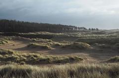 (Neil Bryce) Tags: anglesey newborough llanddwyn beach island sand tide landscape olympus