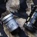 Voigtlander APO-LANTHAR 50mm F2.0 & Leica  APO-SUMMICRON-M 50MM/F2 ASPH ( LHSA Limited Edition )