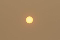 Smokey Sun (001/366) (johnstewartnz) Tags: 001366 day001 onephotoaday oneaday onephotoaday2020 canon canonapsc apsc eos 100canon 7dmarkii 7d2 7d canon7dmarkii canoneos7dmkii canoneos7dmarkii 70200mm 70200 70200f28 70200mmf28 ef70200f28lisusmiii canonef70200f28lisusmiii sun smoke haze australianbushfires 366the2020edition 3662020 day1366 01jan2020 hurunui hurunuiriver project366 366project oneadayonephotoaday2020