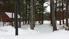 Resting Aside Interstate 195... (Art of MA Foto Stud) Tags: interstate195 wareham snow cold winter frozen pines shelter massachusetts restarea interstate sluch conifer