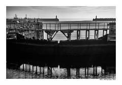 """""""Dans Les Traces Du Poulpe Ou Pour L'Attendrir Faut Taper Dessus... 2"""" (TBWLC Photography) Tags: fdrouet tbwlc nb bw monochrome saintnazaire penhoët nikon d750 port"""