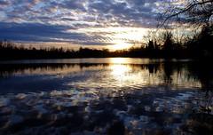 Unterföhring - The Final Sunset... (cnmark) Tags: germany deutschland bayern bavaria unterföhring unterföhringersee poschingerweiher lake pond see sunset sonnenuntergang clouds wolken sky himmel bäume trees nature natur reflection spiegelung ©allrightsreserved
