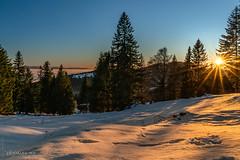 Happy New-Year / Bonne et heureuse Année 2020 ! (christian.rey) Tags: lesrasses lesavatttes hiver sunset coucherdesoleil winter jura mountains sapins soleil sun sony alpha a7r2 a7rii 24105 vaud