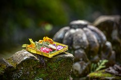 許願 (Anna Kwa) Tags: offerings puragunungkawi gunungkawitemple ancientbalinesehindutemple 13thcenturytemple moment bali indonesia annakwa nikon d750 7002000mmf28 my 許願 wishing 夢 dream 思念 miss always seeing heart soul throughmylens life journey fate destiny travel world 曹格 一