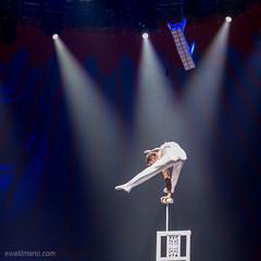 circus roncalli (ewaldmario) Tags: artist circus zirkus performance act hig iso stage white blue chairs light nikon ewaldmario d800 highiso noflash human incredible