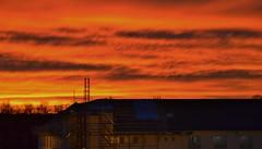 1/1 2020 Kl: 15 20. (johnerlandaxelsson@gmail.com) Tags: tierp uppland sverige kväll natur landskap landscape johnaxelsson