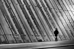 city walk (heinzkren) Tags: schwarzweis blackandwhite monochrome canon canonr eos eosr vienne wien mann man human building facade fassade glass glas contemporary modern lines street streetphotography candid urban