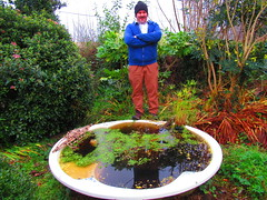 Happy New Year 2020! (sam2cents) Tags: jacuzzi pond water newyear man naturalist funny pool bath garden feature wildlife nature waterfeature