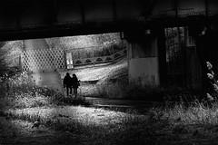 DSC05323C new Year (soyokazeojisan) Tags: japan osaka city street people bw blackandwhite monochrome digital sony rx100ⅵ 2020