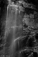Mono Mallyan Spout-9287 (alan.dphotos) Tags: waterfall water fall white moss trees river green leaves woodland tree branches landscape outdoor foliage goathland north yorkshire mallyan spout