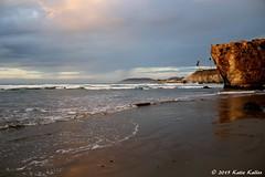 1-11-15 105  Pismo Beach, California in 2015 -Requested by David (gillybooze) (KatieKal) Tags: 11115 canon60d beach ocean pacificocean cliffs palmtrees waves pismobeach california