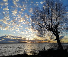Sonnenuntergang vom 30.12.2019 (bianca 11) Tags: sonnenuntergang sunset sunsetmood tree wolken himmel cloudssky seenplatte plauersee mecklenburgvorpommern mv deutschland german