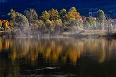 Colori d'Autunno (giannipiras555) Tags: autunno lago colori alberi natura paesaggio panorama nikon idro animali ottobre
