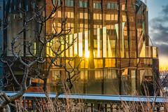 Web High Line in December 1 (mtschappat@verizon.net) Tags: high line nyc sony a6500 1855 lens photoshop luminar