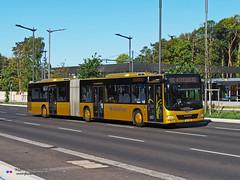 MAN Lion's City GL A40 - RGTR (Vandivinit 2095) (Pi Eye) Tags: man lionscity lionscitygl articulé gelenk a23 a40 luxembourg avl vdl multiplicity rtgr letzebuerg bus