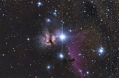 Flammennebel - 30.12.2019 (michel1276) Tags: flammennebel ngc2024 ic434 pferdekopfnebel astro astrofotografie astrophotography deepsky deepskyfotografie deepskyphotography deepskyobjekct orion stars skywatcher150750 sonya7iii astrometrydotnet:id=nova3860119 astrometrydotnet:status=solved