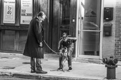 (jfre81) Tags: chicago wicker park bucktown damen man woman dog petting street life scene sidewalk public storefront 312 windy second city urban james fremont photography jfre81 canon rebel xs eos