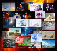 The year turns, and a new decade summons! (Elisafox22) Tags: elisafox22 december 2019 collage snapshot images summary thumbnails border winter leaves flowers fyviecastle monochrome iphone landscape sunshine trees fence seascape infrared rain macro chain festive christmas hogmanay holly berries candles baubles banff stormy seashore sea fyvie sky clouds fences outdoor indoor stilllife glass blackandwhite postprocessing frost agapanthus blue marbles crystalsphere yellow white black hydrangea aberdeenshire scotland elisaliddell©2020 bowfiddlerock