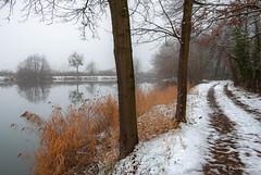 Bonne année 2020 ! (Pascale_seg) Tags: hiver inverno winter paysage landscape neige snow neve moselle lorraine grandest france nikon riverscape étang reflets riflessi reflections nature natura