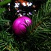 Pink decoration on a Christmas  tree