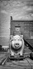 At the American Sign Museum (Randy Durrum) Tags: pig sign fiberglass american museum cincinnati durrum samsung s9 plus clouds cloud