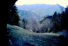 Bluff View (fillzees) Tags: nature rock stone tree person candid outdoor mountain gsmnp landmark bluff wideangle trail landscape seated