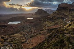 Happy new year! (aland67) Tags: landscape longexposure scotland uk quiraing isleofskye leendsoft09 lakes sunrise tree lonley travel clouds sheep aland de wit outdoor
