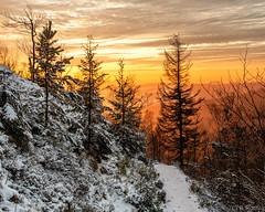 Abendstimmung im Winter (Bilderweise Hobbyfotografie) Tags: winter natur nature himmel sky clouds wolken farben schnee snow bäume trees kleis klic tschechien tschechische republik czech republic