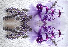 Lavender RIBBONS (Lani Elliott) Tags: homegarden flowers lavender mauve pretty whitebackground mauveribbons purpleflowers macro upclose closeup macrophotography macrounlimited bokeh