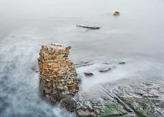 Bar Harbor (cfr-photos) Tags: carlfrella carlrella maine barharbor hancockcounty mdi mtdesertisland nikkorafs18200mm rocks beach ocean seastack