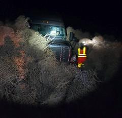 #Tumblegeddon: Deluge of tumbleweeds buries cars and closes US highway (danijela1222) Tags: tumblegeddon deluge tumbleweeds buries cars closes us highway richland unitedstates