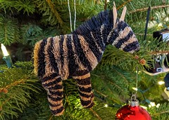 This may not be in Old San Juan... (Kerri Lee Smith) Tags: christmasornament christmastree thismaynotbeoldsanjuanbut zebra ornament christmas group inanimateanimal