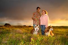 Christmas in Waimea 2019 59 (JUNEAU BISCUITS) Tags: sunset hawaii hawaiiphotographer sonya7riii sony waimea bigisland portrait portraiture family familyportrait ohana siberianhusky husky alaskanmalamute